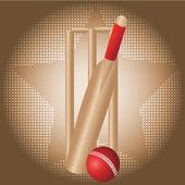 Juego de cricket — Vector de stock