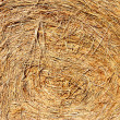 Stock Photo: Close up of hay