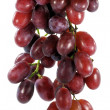 Bunch of grapes — Stock fotografie