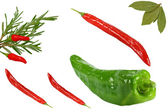 Rosemary chilli bayleaf — Stock Photo