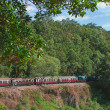 Kuranda train - Stock Photo