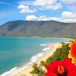 Stock Photo: Port Douglas