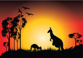Sunset with two kangaroos — Stok fotoğraf