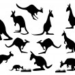 Kangaroo silhouette - Stock Vector