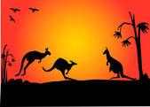 3 袋鼠日落 — 图库矢量图片