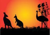 Kangarooo and emu in the sunset — Stock Vector