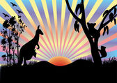Koala and kangaroo in sunset — Stock Vector