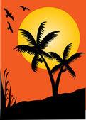 Palms sunset dream — Stock Vector