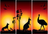Set of australian animals with the evening sunset — Stockvector