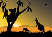 Canguru coala — Vetor de Stock