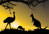 Kangaroo and emu — Stock Vector