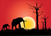 Elephants — Stock Vector