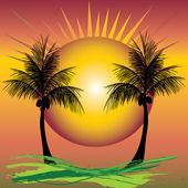 Palms sunset — Stock Vector