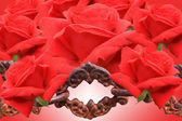 Red roses and old chain — Stock Photo