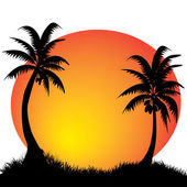 Palms and moon — Stockvector