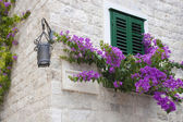 Window with green shutters — Stock Photo