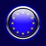 ikona Evropské unie. tlačítko vlajka EU — 图库矢量图片