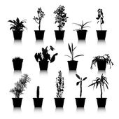 Set of silhouettes house plants — Stock Vector