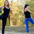 Stock Photo: Two women exercising together