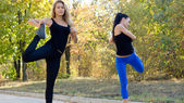 Two women exercising together — Stock Photo