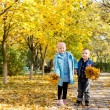 Young children collecting autumn leaves — Stock Photo