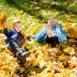 Kids frolicking in yellow autumn leaves — Stock Photo #14023637