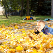 Little boy photographing autumn leaves — Stock Photo #14033557