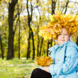 Proud little girl in autumn splendour Proud little girl in autumn splendour — Stock Photo