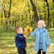 Kids collecting autumn leaves in woodland — Stock Photo