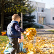 Young Children Gathering in Leaves in Autumn Park — Stock Photo