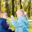 Children Having a Snack in a Lush Green Woodland — Stock Photo #14059902