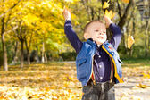 Cheerful boy throwing autumn leaves — Stock Photo
