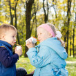 Young Children Drinking Juice in a Park — Stock Photo #14060086