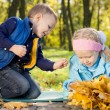 Brother and sister in an autumn forest — Stock Photo