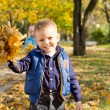 Smiling boy with bunch of autumn leaves — Stock Photo