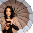 Beautiful brunette carrying an umbrella — Foto de Stock