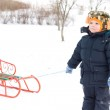 Cute small boy pulling a sled — Stock Photo #18039511