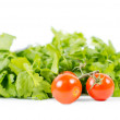 Healthy tomatoes on vine in front of green salad — Stock Photo