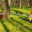 Little boy exploring the park — Stock Photo #24406305