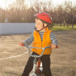 Handsome happy little boy out riding — Stock Photo
