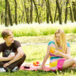 Young couple enjoying a picnic — Stock Photo #25082551