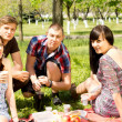 College friends having a picnic in the park — Stock Photo