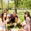 Two young couples enjoying a picnic — Stock Photo