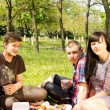 Two attractive young couples on a picnic together — Stock Photo