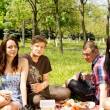 Two teenage couples having a picnic — Stock Photo