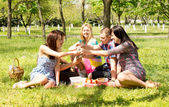 A group of attractive young friends on picnic — Stock Photo