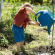 A sweet cute kid watering the plants - Stock Photo