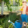 Stock Photo: Little boy helping with gardening