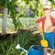 Little boy with a spade in the garden — Stock Photo