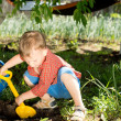 Young boy digging in the garden — Stock Photo #25364689